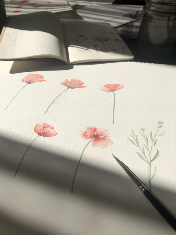 Aquarelle de coquelicots rouges