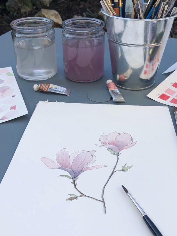 Aquarelle de fleurs de magnolias