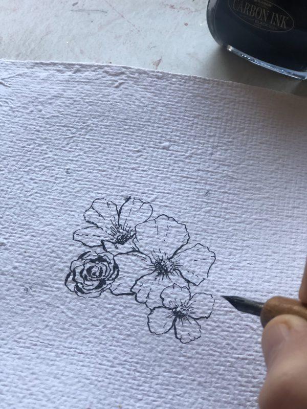 illustration botanique à l'encre