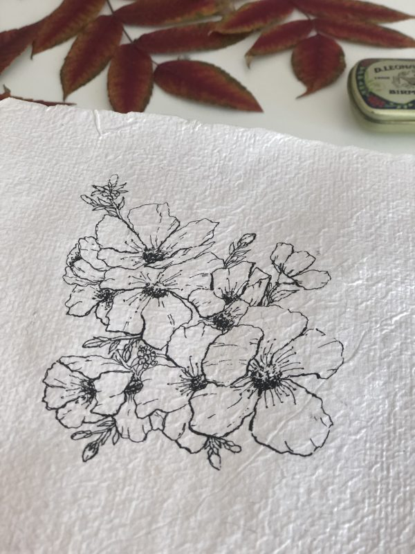 Détail illustration botanique à l'encre sur papier fait-main