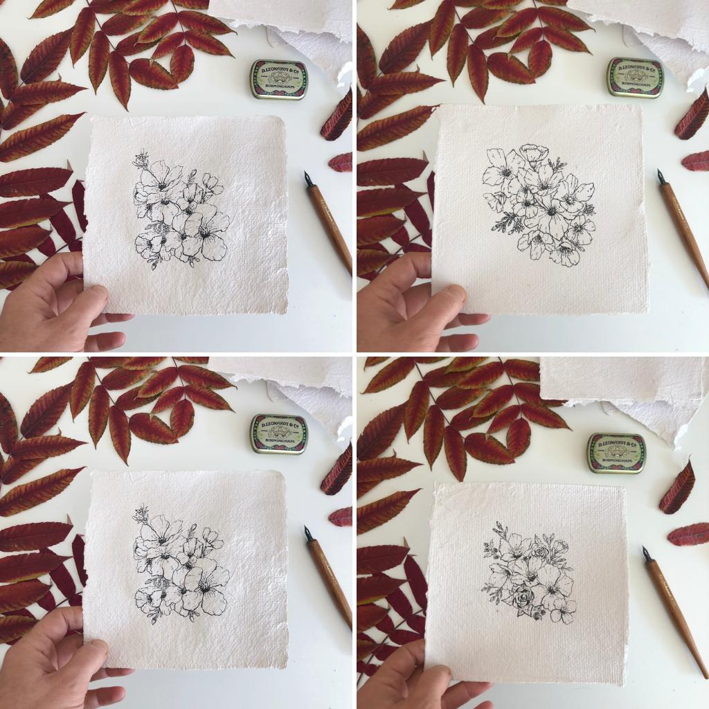 Illustrations botaniques sur papier fait-main